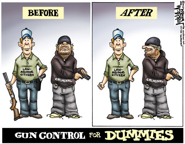 Gun Control for Dummies - Naples Gun School CWP Classes FFL